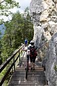 Radtour, Menschen schieben Räder, Rückansicht, Brücke, Felswand