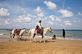 Man riding horses on beach while on vacation in Kilyos, Istanbul, Turkey