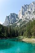 Österreich, Steiermark, Berg Meß- nerin, Grüner See, malerisch