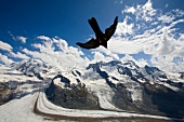 View of Breithorn mountain range covered with snow and bird flying