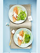 Marinated salmon with halloumi and a mint dressing