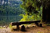 Schwarzwald: Natur, Berglandschaft, Wälder, Karsee, sommerlich, Idyll
