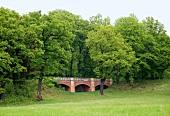 Sachsen: Bad Muskau, Muskauer Park, Bäume grün, Brücke, sommerlich