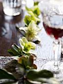 Poinsettia flowers as table decoration