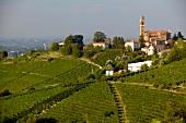 Italien, Piemont, Weinlandschaft über dem Belbo-Tal