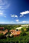 Italien, Piemont, Blick nach Westen, Ebene bei Monforte d'Alba