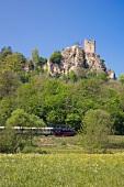 Bayern, Franken, Fränkische Schweiz, Naturpark, Reise, Zug