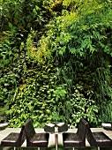 Paris: Restaurant Pershing Hall, Pflanzen-Wand, Tische, aussen