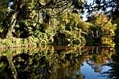 Irland: Ashford, Mount Usher Garden, Brücke über Gewässer, malerisch.