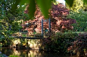 View of Mount Usher Garden bridge over water in Ashford, Ireland