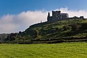 Irland: Rock of Cashel, Burgruine auf Felsvorsprung, grün.