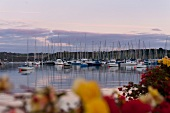 View of sailboats moored at Kinsale harbour at sunset, Ireland, UK