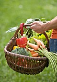 A wicker basket filled with fresh summer vegetables