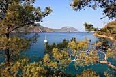 Kemer: Bucht von Adrasan, Boot, Bäume, malerisch.