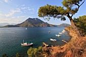 Kemer: Bucht von Adrasan, Boote, Pinienbaum, malerisch.