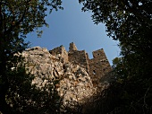Low angle view of ruined city of Olympos from forest, Lycia, Turkey