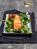 Salmon fillet on a bed of spinach