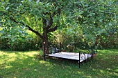 Empty iron bed under tree in garden at Baltic coast, Schleswig-Holstein