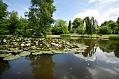 View of Habernis garden pond, Baltic Coast, Schleswig-Holstein