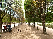 People sitting in garden of Palais-Royal, Paris, France