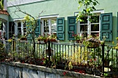 Exterior of cafe Rufus with plants and green window, Augsburg, Bavaria, Germany