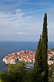View of old town with old port of Dubrovnik, Germany