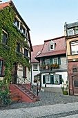 Houses in Rheingau, Walluf, Hessen, Germany