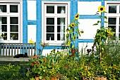 Half-timbered house in Rheingau, Eltville, Germany