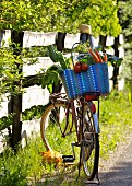 A basket full of fresh vegetables on bicycle left on the side of a path
