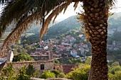 Kroatien: Insel Lastovo, Blick auf den Ort Lastovo
