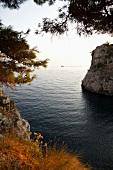 Coastal bay behind the Fort Lovrijenac in Croatia
