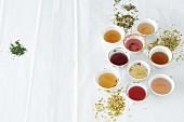 Verschiedene Tees in Tassen zwischen getrockneten Kräutern & Gewürzen