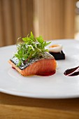 Wild Scottish salmon with a bouquet of herbs