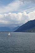 Sailboat in Lake Maggiore, Ticino, Switzerland