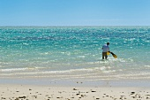 Rear view of man standing on Ningaloo Reef, Western Australia,