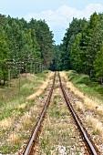 View of train track in Warmia-Masuria Masuria near Mikolajki, Poland