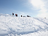 Close-up of winter walk in Titlis, Uri Alps, Engelberg, Switzerland