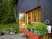 Farm shop at Blunk, Schleswig-Holstein, Germany