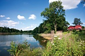 View of Behnitzer lake and cafe, Germany