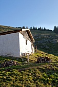 Man standing near house at chiemgau Alps mountain, Bavaria, Germany