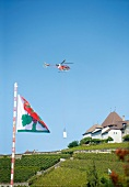 Genfer See, Kanton Waadt, Lavaux, Helikopter über Weinbergen
