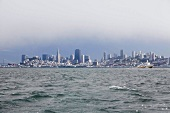 Meer, Skyline, Nebel, Pazifik, San Francisco