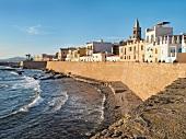 View of Mediterranean sea and old town, Alghero, Sardinia, Italy