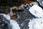 Close-up of frozen and flowing stream in Lapland, Finland