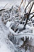 Lappland, Bach, fließend, Eis, gefro ren