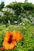 Flowers in garden of monastery Gerode with sculpture in distance, Germany