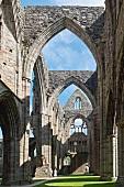 Wales, Wye Valley, Tintern Abbey, Klosterruine