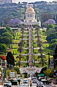 View of Shrine dome with steps and palm trees at Bahai Garden, Haifa, Israel
