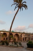 View of Al Jazzar Mosque courtyard and palm tree, Galilee, Acre, Israel