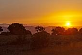 Israel, Golan, Golanhöhen, Berge, Abendlicht
